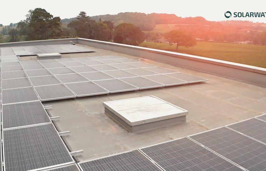 panneaux solaire dans vignoble solarwatt
